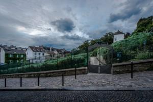 Harvesting Time in Montmartre Parisian Clichés