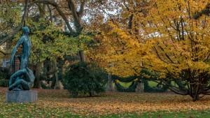jardin du luxembourg parisian clichés