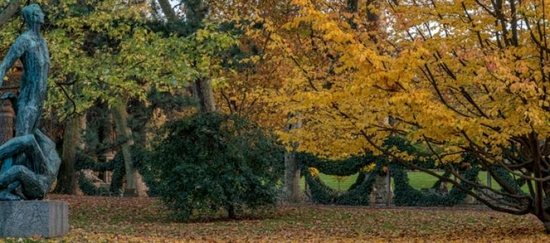 Autumn in Garden & Parks